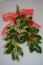 where to buy mistletoe christmas fresh harvested mistletoe