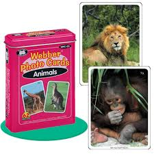 webber photo cards animals product info