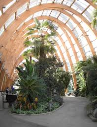 sheffield winter garden gardens pinterest sheffield winter