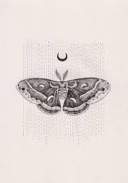 moth tattoo meaning tattoo collections