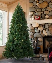 fraser fir tree wisconsin fraser fir christmas tree tree classics