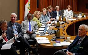 raleigh city council elections at large candidates seek to stand