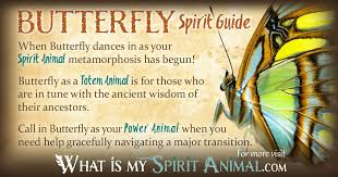 butterfly symbolism meaning spirit totem power