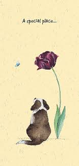 sympathy for loss of dog pet condolence sympathy card on the loss of your pet dog