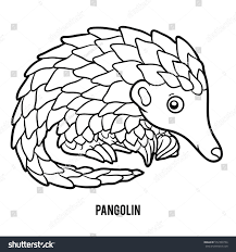 coloring book children pangolin stock vector 572399794 shutterstock