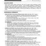 Best 25 Fashion Resume Ideas by Fashion Marketing Resume Best Resume Example