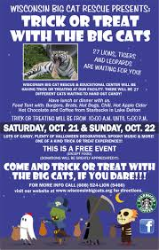 Big W Halloween Decorations Trick Or Treat With The Big Cats 2017 Wisconsin Big Cats