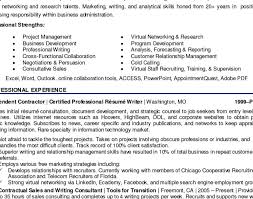 resume writers styleresumes c level executive resume writing help in
