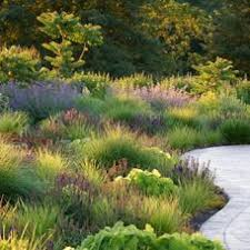 image result for designing with ornamental grasses gardens of