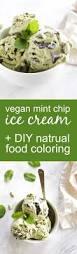 102 best vegan ice cream and sorbet images on pinterest vegan