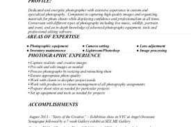 Credit Analyst Resume Sample by Retail Analyst Resume Sample Reentrycorps