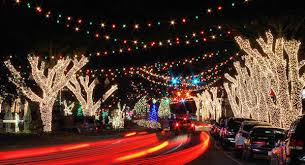 christmas lights in asheville nc forest city hometown holiday lights