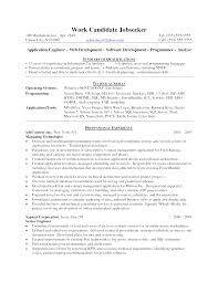 entry level java developer resume sample java resume it cv template cv library technology job description