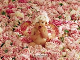 baby flowers sweety babies images baby flowers wallpaper and background photos
