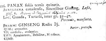 linnaeus and chinese plants a test of the linguistic imperialism