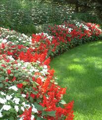 fresh flower bed design on a slope 9130