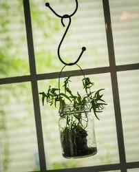 down to earth style window decor with a ball jar u0026 ivy