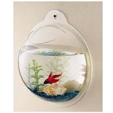 Fish Bowl Decorations How To Clean A Small Fish Bowl Properly