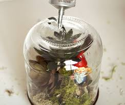 upcycle wine bottles to terrarium wonderlands