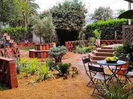 Backyard Tree Ideas Backyard Landscaping Designs With Bonsai Tree Ideas Felmiatika Com