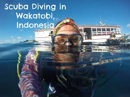 how to become a scuba dive instructor coffeewithasliceoflife