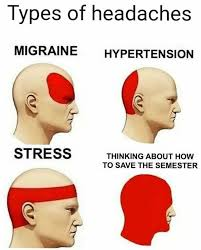 Meme Types - thinking about how to save the semester types of headaches know