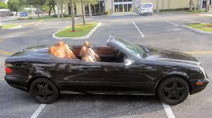 convertible mercedes 2000 2000 mercedes benz clk430 convertible j156 kissimmee 2015