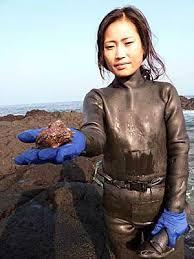 fun korean mermaids facts kids