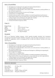 Database Developer Resume Sample by Marvellous Inspiration Pl Sql Developer Resume 14 Server Database