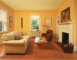 House Interior Painting - Home interior paint