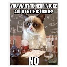 Sad Cat Meme - sad grumpy cat no meme grumpy best of the funny meme