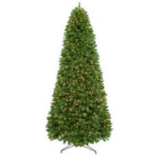 11 ft wilcox spruce tree 3000 tips with 1200 clear lights