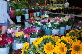 san francisco florist san francisco flower mart02 jpg