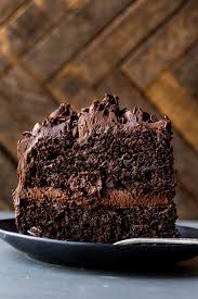 super rich and fudgy chocolate cake with chocolate chip and