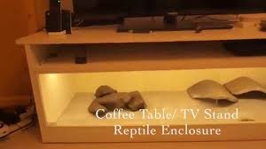 Terrarium Coffee Table by Tv Table Reptile Enclosure Youtube