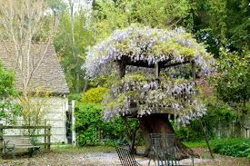 Coolest Treehouses Top 10 Treehouses Home Decorating Interior Design Bath