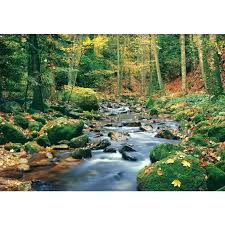 wall ideas vinyl wall decals nature forest stream wall mural vinyl wall decals nature forest stream wall mural wall murals nature india removable wall decals nature