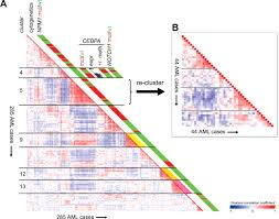 a decade of genome wide gene expression profiling in acute myeloid