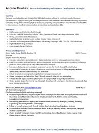 Digital Marketing Specialist Resume Brand Strategist Resume Virtren Com