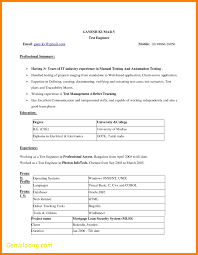 resume template word 2007 resume templates word 2007 best templates