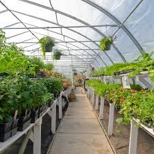 Nursery Plant Supplies by Nursery Garden Center Pos Cloud Pos Retailpoint