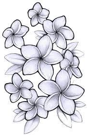 best 25 hibiscus flower tattoos ideas on pinterest hibiscus