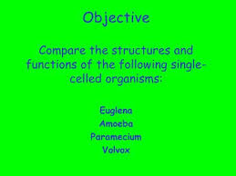 do now 1 what characteristics must an organism possess in order to