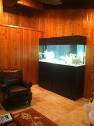 Wall Aquarium by Aquariums By National Aquatics