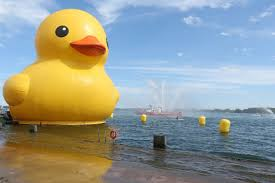 giant rubber duck all it was u0027quacked up to be u0027 after all