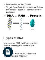 ch 13 rna and protein synthesis rna translation biology