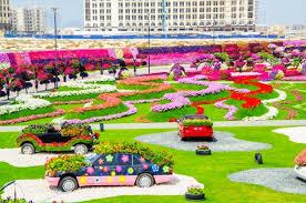 dubai miracle garden world u0027s biggest natural flower garden