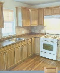 kitchen awesome unfinished kitchen cabinets home decor color