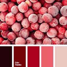 deep red color deep red color color palette ideas
