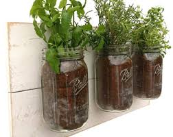 wall herb garden etsy